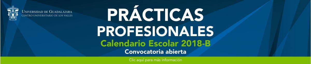Convocatoria para realizar prácticas profesioanles para dependencias y estudiantes.