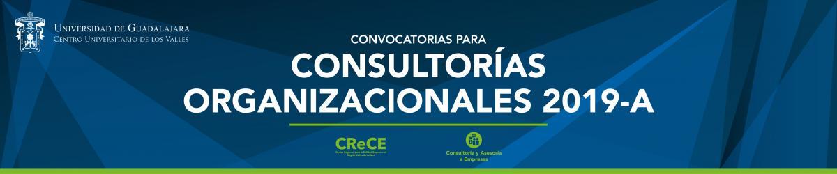 Consultorías Organizacionales ciclo 2019-A