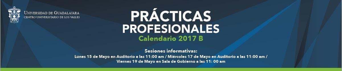 Convocatoria de Prácticas Profesionales 2017b
