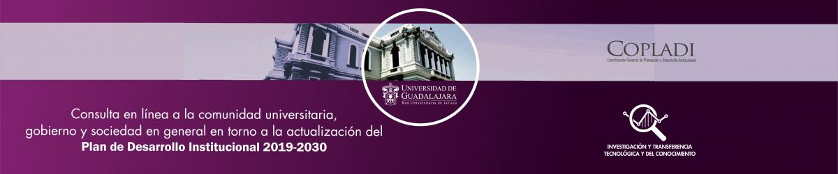 Plan de Desarrollo Institucional 2019-2030